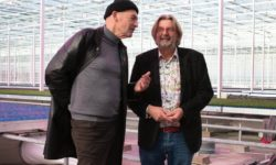 Rob Baan - Rem Koolhaas - Koppert Cress