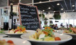 salade-rob-bob