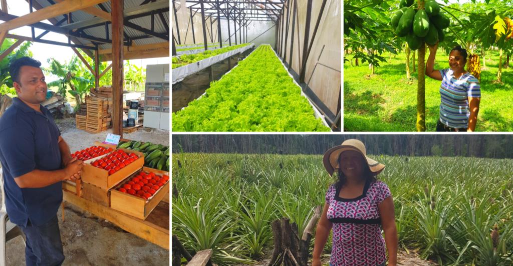 Ondanks Covid-19 toch award van Stichting d'ONS voor kleine duurzame landbouwers